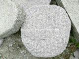 フロアーリング、景色、庭、正方形のための選ばれた花こう岩の敷石のスレート