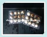 Fabrikant van de Dienbladen van het Ei van de Kwartels van China de Plastic