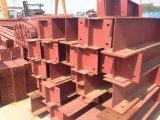 Montaggio chiaro del magazzino della struttura d'acciaio con lo SGS