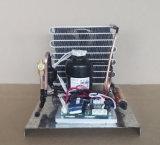 Mini condensateur se condensant d'éléments de compresseur de réfrigération d'éléments de Purswave St19DC12hc DC12V