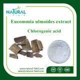 Порошок Anti-Aging порошка выдержки Eucommia Ulmoides хлорогеновый кисловочный используемый в косметиках