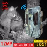12MP 1080P GSM MMS 경보 배터리 전원을 사용하는 휴대용 정찰 가신 사진기 중국제