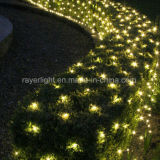 La rete professionale LED illumina le decorazioni del prato inglese del giardino