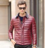 남자의 형식 옥외 착용 스포츠용 잠바에 의하여 덧대지는 겨울 재킷