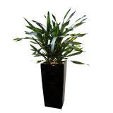 安く多彩なガラス繊維の植木鉢