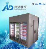 食糧果物と野菜のための冷蔵室の記憶デザイン冷蔵室