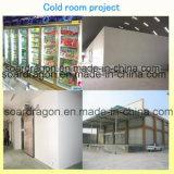 Congelatore facile rapido dell'isolamento dell'unità di elaborazione dell'installazione/conservazione frigorifera/cella frigorifera