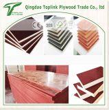 合板の構築そして建築材料