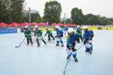 Nicecourtの専門のローラーのスケートリンクまたはスケートで滑る床