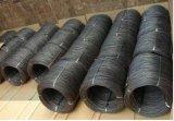 Filo di acciaio a basso tenore di carbonio laminato a caldo SAE1008 Rod