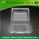 Envase plástico claro modificado para requisitos particulares de Dispoasble del alimento del nuevo producto