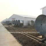 Light Steel Structure Poultry House pour Morder Farm Equipment