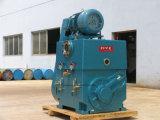 증류법 란을%s 루트 시스템을%s 가진 대중적인 회전하는 피스톤 진공 펌프