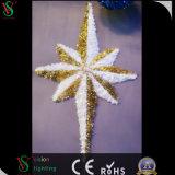 Ocho decoración de la alameda de la luz del adorno de la guirnalda de la iluminación LED 3D del día de fiesta de la estrella