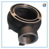 Form Iron Gate Pump Fitting durch Casting Process