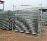 Qualität mit preiswerter Preis-temporärem Zaun