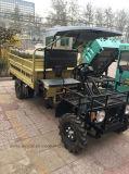 fora do Buggy/exploração agrícola da estrada veículo utilitario usado UTV com certificado do CCC