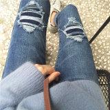 Calças de brim rasgadas novas da sarja de Nimes das mulheres dos furos da mola