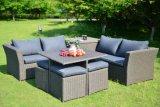 Insieme di vimini della mobilia del sofà esterno stabilito del rattan del patio