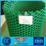 Drenagem plástica bidimensional Geonet do HDPE