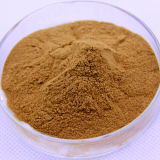 Rhodiola Rosea Auszug Rhodiola Glykoside und Aglucone Tyrosol 3%