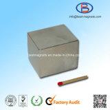 Blok het Van uitstekende kwaliteit van de Magneet van het Neodymium van NdFeB voor Lineaire Motor