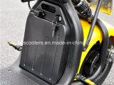 2017の新しいHolyso Harley電気都市ココヤシ2のシートのスクーター(YC-2017005)