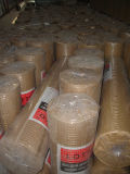 Galvanizzato o PVC Coated Iron Welded Wire Mesh