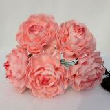 Die spätesten Hochzeits-Geschenke; Hochzeits-Dekoration; Hochzeit Flowers06