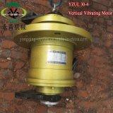 AC 3 단계 전기 진동체 스크린 모터 (YZUL30-4)