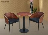 Modèle français de chaise de café de Bentwood/chaise de restaurant/chaise en bois avec le coussin d'unité centrale