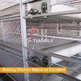 TianruiデザインHタイプ良質自動電池の鶏の肉焼き器のケージ