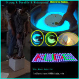""""""" sfera di colore del LED 12 con telecomando e la batteria ricaricabile"""