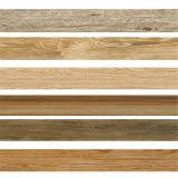 بلاط الأرضيات الخشب تصميم لBatnroom