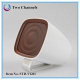 TF Mini Speaker