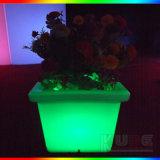 Hogar ligero iluminado crisol decorativo del jardín de la lámpara de la planta LED de la flor