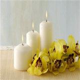 Vela blanca del pilar de los regalos del favor de la boda