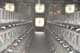 Gabbia del pollo della carne con il sistema automatico della strumentazione (un tipo)
