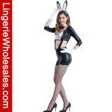 Kijkt de Sexy Hoge Natte Taille van vrouwen het Buitensporige Kostuum van Cosplay van het Konijntje