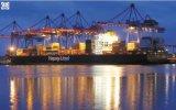 Consolideer de Één Dienst van de Logistiek van het Einde Internationale