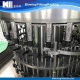 Terminar la planta embotelladoa en botella animal doméstico de la máquina de rellenar del agua potable del Aqua