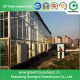 Der Schlag, der PC verkauft, deckte Sägezahn-Gewächshaus mit grünes Haus-Heizung ab