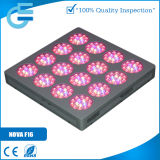 Innenvegetable Breeding 600W Grow LED Lamp