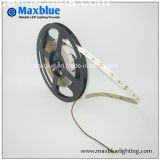 3014 Cct Variant und Dimmable LED Strip Lighting