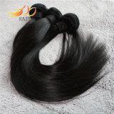 8A加工されていないバージンの人間の毛髪のマレーシアの直毛の織り方