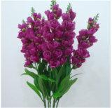A violeta do Hyacinth floresce a simulação barata