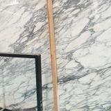 Azulejo de mármol de la losa de Arabescato de la losa blanca Polished para la decoración