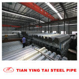 GI Square Steel Pipe 50*50mm