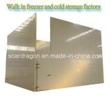 O poliuretano isolou a caminhada no armazenamento Refrigerated armazém do congelador