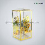 인쇄된 플레스틱 포장 명확한 애완 동물 PVC 상자